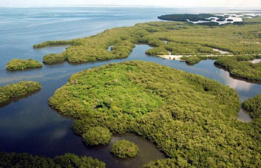 Cockroach Bay Islands